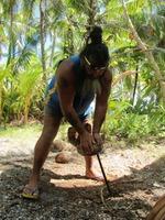 Grundkurs i kokosnötslära