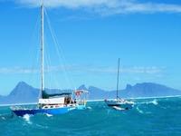 Jättevågor på Tahiti