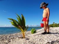 Livet på atollen