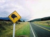 Nya Zeelands egen älg