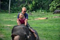 På elefantryggen