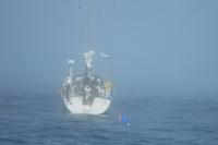 Byteshandel på havet